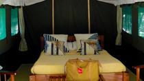 3 Days 2 Nights Group Safari in the Mara