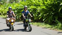 7-Hour Mini-Motor Bike Tour in Bali, Ubud
