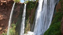 Ouzoud Waterfalls Full-Day Tour from Marrakech, Marrakech, Full-day Tours