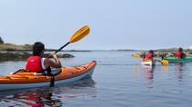Victoria Oak Bay Shoreline Kayak Tour, Victoria, Kayaking & Canoeing