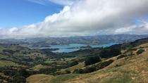 Private Akaroa Day Tour including Harbour Cruise and Alpaca Farm Tour, Christchurch, Day Trips