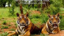 Private Corbett National Park Tour from New Delhi, New Delhi, Attraction Tickets