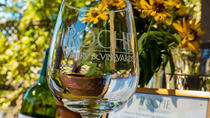 City and Wine: Half-Day Sonoma Wine Tour plus Downtown Hop-On Hop-Off Bus Tour, San Francisco, ...