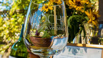 Half-Day Sonoma Wine Tour plus 1 Day Hop-On Hop-Off Bus Pass, San Francisco, Half-day Tours