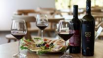 Wine Tour Montenegro - Visit 3 wineries in private transfer plus tour guide, Podgorica, Private...