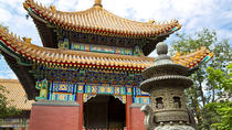 Beijing City Coach Tour: Hutongs, Beijing Zoo and Lama Temple, Beijing, City Tours
