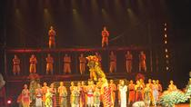 Beijing Evening Kung Fu Show with Hotel Pickup and Drop-Off, Beijing, Theater, Shows & Musicals