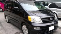 Shanghai Private Transfer from Hotel to Shanghai International Cruise Terminal, Shanghai, Port ...