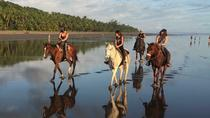 Beach Horseback Riding Experience, Puntarenas, Horseback Riding