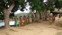 Tour Embera Indigenous Village and Chagres Rainforest, Panama City, Day Trips