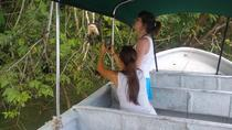 Tour Monkey Island and Indian Village, Panama City, Day Trips