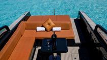 St Maarten Luxury Speedboat Private Charter