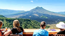 Full-Day Tour Bali's History, Nature, Art and Culture in One and free Lunch, Ubud, Full-day Tours
