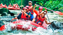 White Water Rafting Ubud with Guide Including Buffet Lunch, Ubud, White Water Rafting