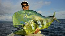 Full-Day Fishing Experience from Salvador, Salvador de Bahia
