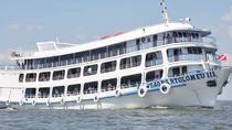 Manaus to Santarém by Boat, Manaus, Day Cruises