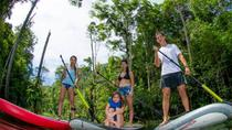 Stand Up Paddling Tour, Manaus, Nature & Wildlife