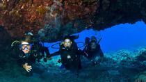 2-Tank Scuba diving Adventure, Big Island of Hawaii, 4WD, ATV & Off-Road Tours