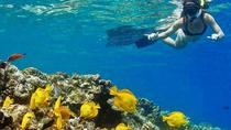 Kealakekua Bay Captain Cook Snorkel Adventure, Big Island of Hawaii, 4WD, ATV & Off-Road Tours