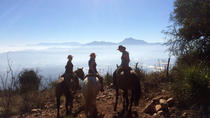 2-Day Horseback Riding in the Hills, Valparaiso