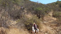 2-Day Trip Horseback Riding and Sleeping in the Hills from Valparaiso, Valparaíso, Multi-day Tours