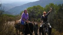 Chilean Precordillera Horseback Ride from Santiago, Santiago, Horseback Riding