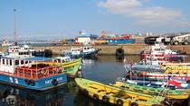 City and Coast Tour from Valparaiso to Concón, Valparaíso, Day Trips