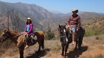 Half Day Horseback Riding in the Chilean Countryside from Santiago, Santiago, Horseback Riding