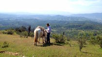Horseback Ride with Barbecue in the Hills from Santiago, Valparaíso, Multi-day Tours