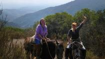 Horseback Riding Adventure in the Chilean Countryside, Valparaíso, Horseback Riding
