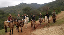 Horseback Riding and Ranch Day Trip with Lunch from Santiago, Santiago