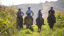 Horseback Riding at Organic Vineyard from Valparaiso, Valparaíso, Horseback Riding