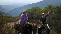 Horseback Riding Tour in the Chilean Precordillera from Valparaiso, Valparaíso