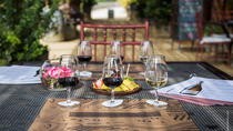 Wine Tour and Lunch at Organic Vineyard from Valparaiso, Valparaíso, Wine Tasting & Winery Tours