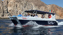 Espiritu Santo Island Snorkel Expedition, La Paz, Day Cruises