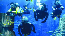 Dubai Atlantis Discover Scuba Dive, Dubai, Attraction Tickets