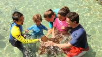Dubai Atlantis Ray Feeding Experience, Dubai, Water Parks