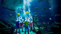Dubai Atlantis Shark Safari Experience, Dubai, Attraction Tickets