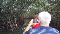Half-Day Mangrove Tour from Your Cruise Ship in Cartagena, Colombia, Cartagena, Ports of Call Tours