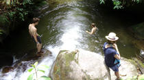 Excursion privée : Medellín Nature Experience, Medellín, Private Sightseeing Tours