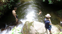 Private Tour: Medellín Nature Experience, Medellín, Private Sightseeing Tours