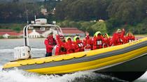San Francisco Bay RIB Boat Cruise, San Francisco, Hop-on Hop-off Tours
