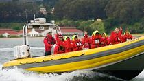 San Francisco Bay Sightseeing Boat Tour, San Francisco, City Tours