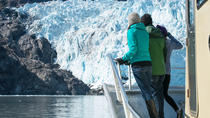 Full-Day Kenai Fjords National Park Adventure Cruise, Anchorage, Day Trips