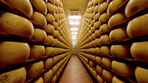Bologna Food Experience: Factory Visits with Gourmet Lunch and Wine Tasting, Bologna