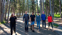 Private Local Walking Tours in Banff, Banff, City Tours