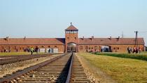 Auschwitz-Birkenau Museum Tour from Krakow, Krakow, Day Trips