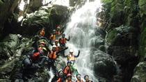 Osakana shower climbing (Canyoning), Takayama, Climbing