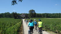 Burgundy Bike Tour with Wine Tasting from Beaune, Beaune