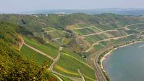 Boppard Icewine and 30 minutes Wine Tasting, コブレンツ